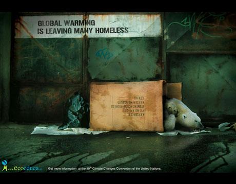 homeless-polar-bear_msp1