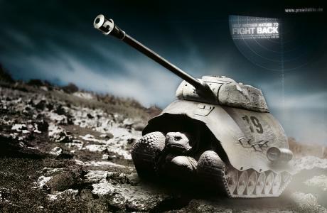 turtle-tank_msp1