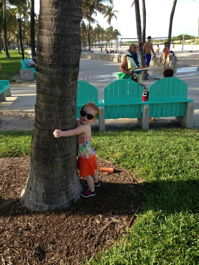 My little tree hugger - South Beach