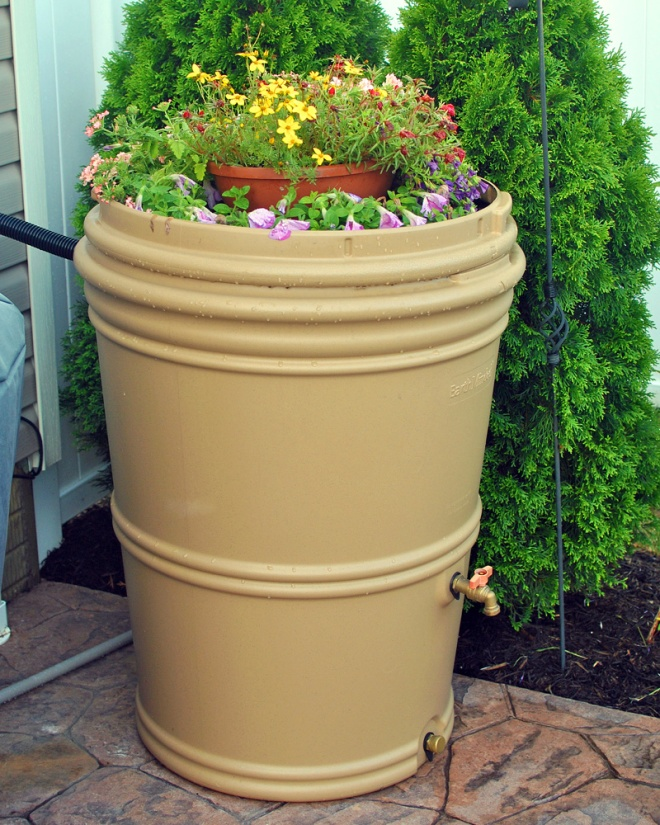 This year we decided to use our barrel lid as a planter and I'm loving the way it's filling in!