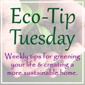 eco-tip-tuesday