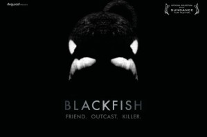 blackfish-cover